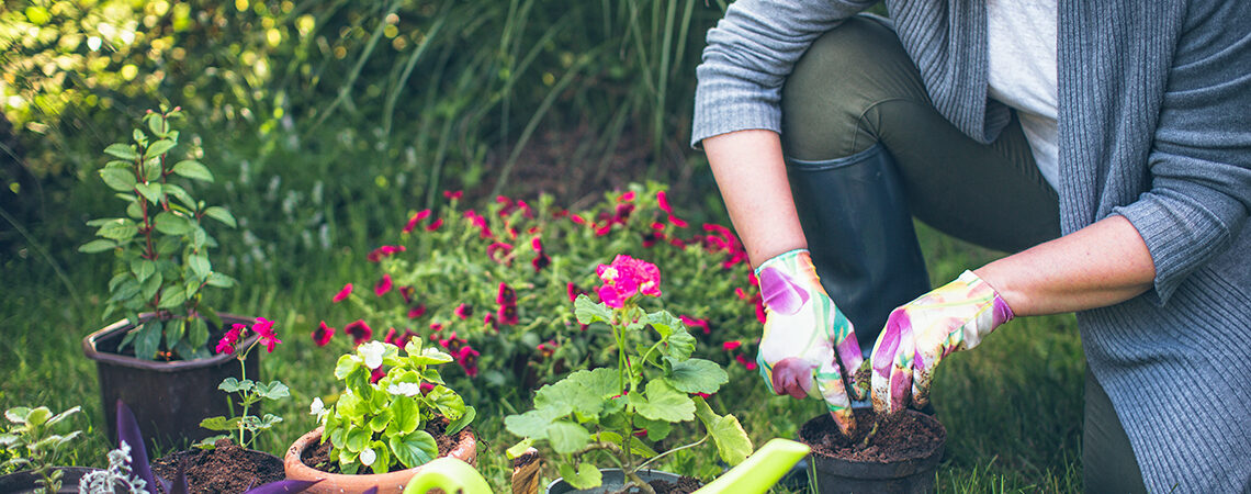 5 Tips To Naturally Improve Your Garden
